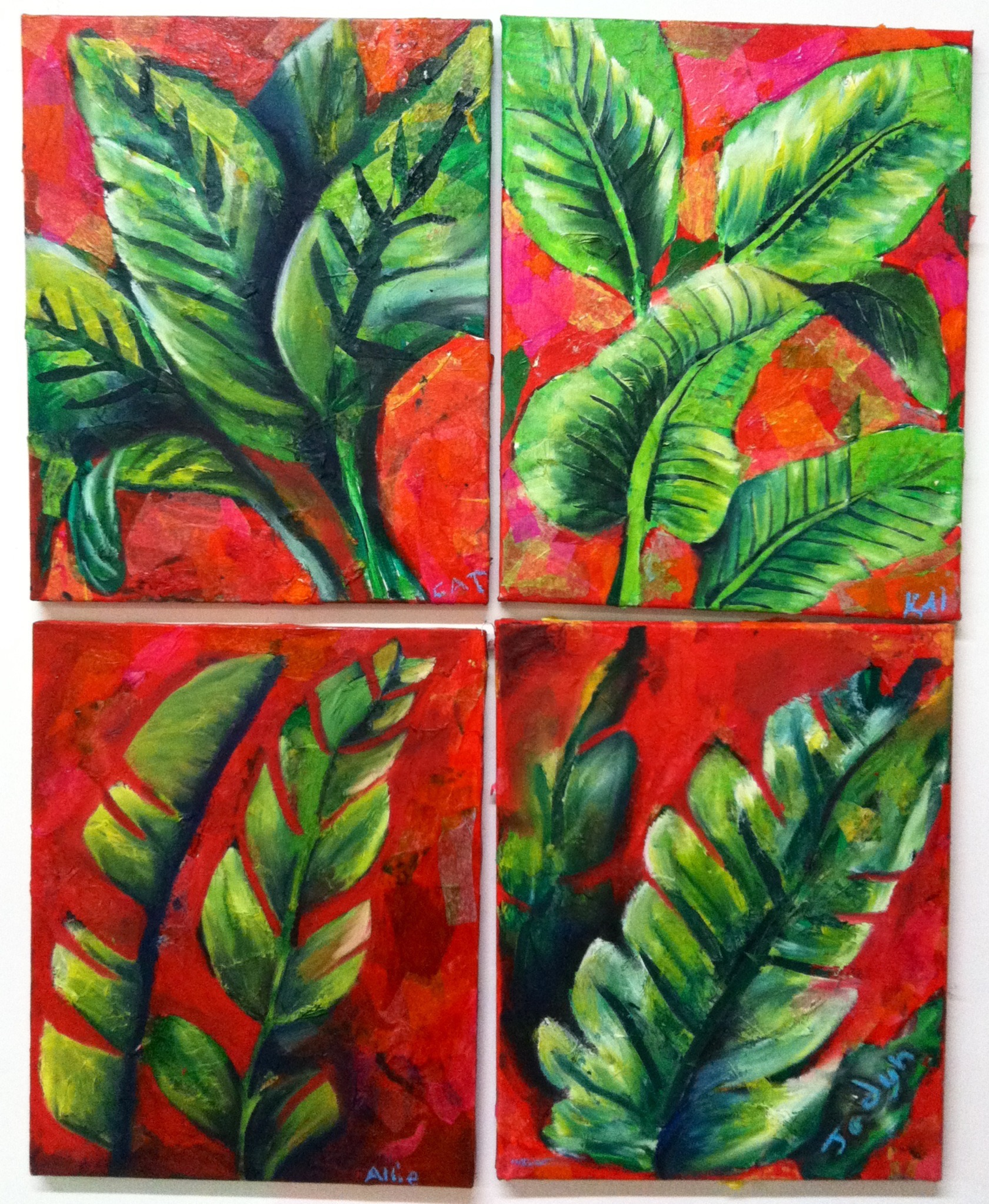 Botanical Studies Grades 1-4
