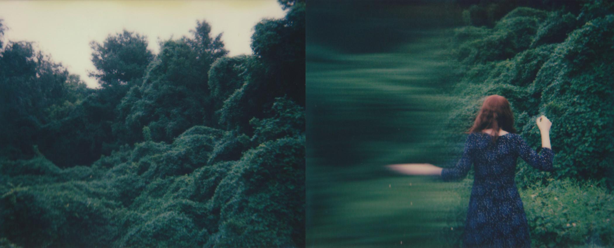Greenvalley.jpg