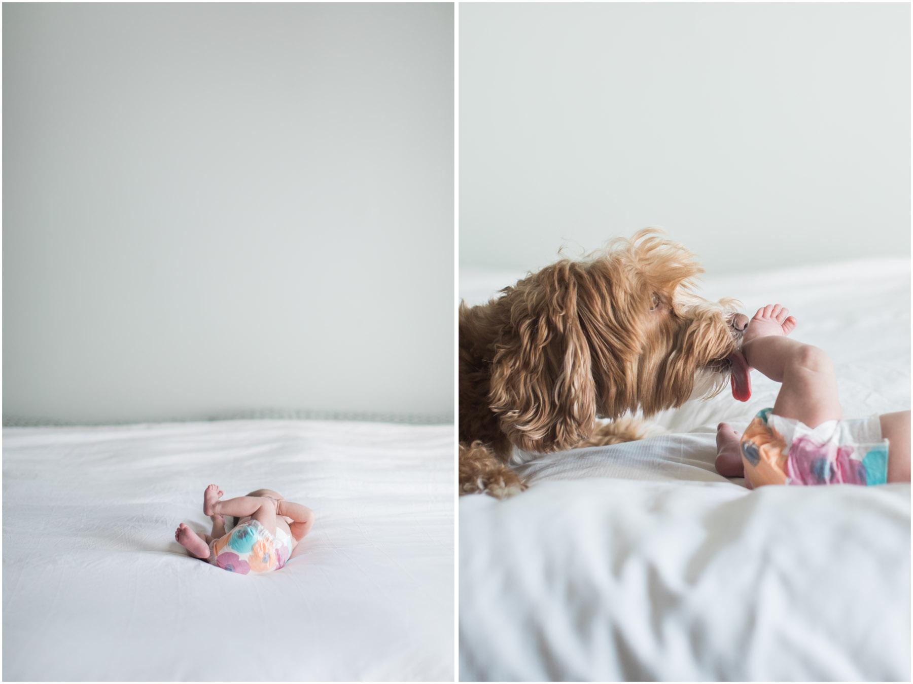 JennaBethPhotography-Sullivan-6.jpg