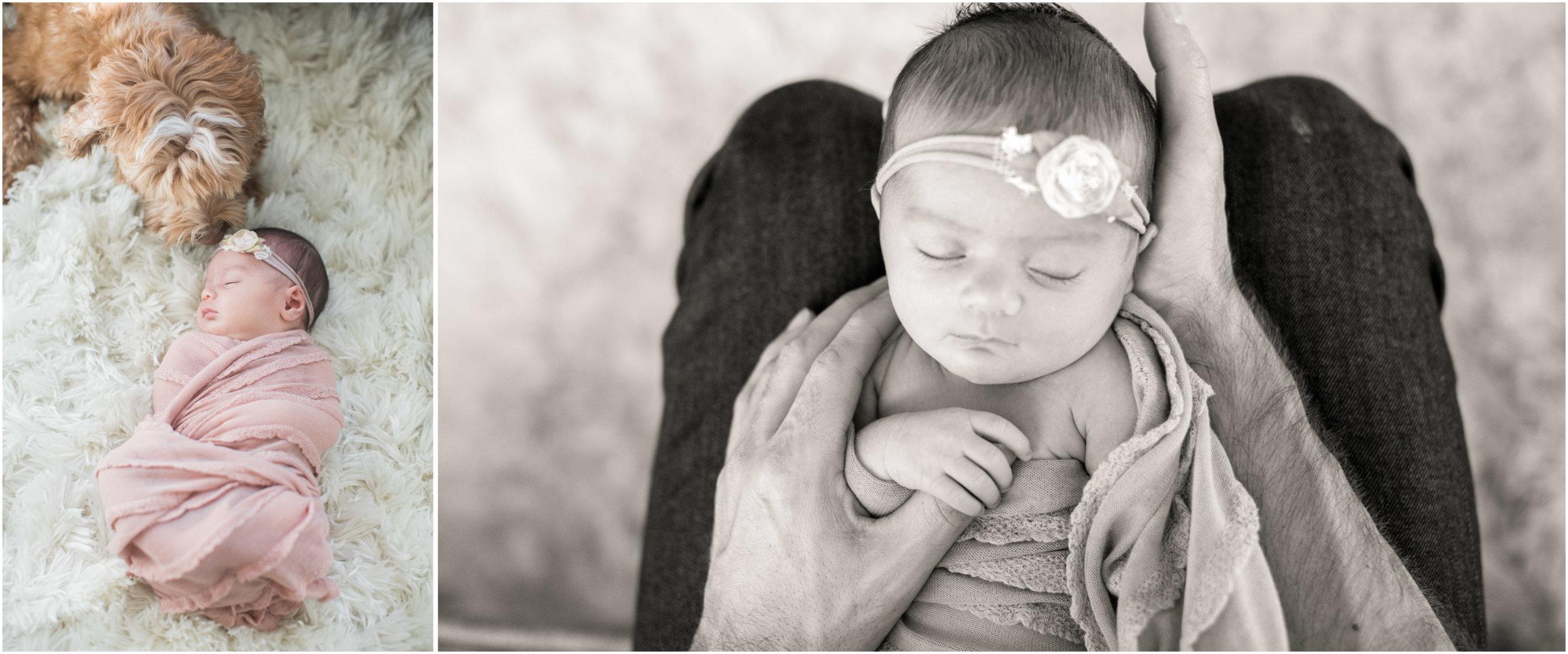 JennaBethPhotography-Sullivan-5.jpg