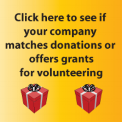 yellow-matching-volunteer-grant.png