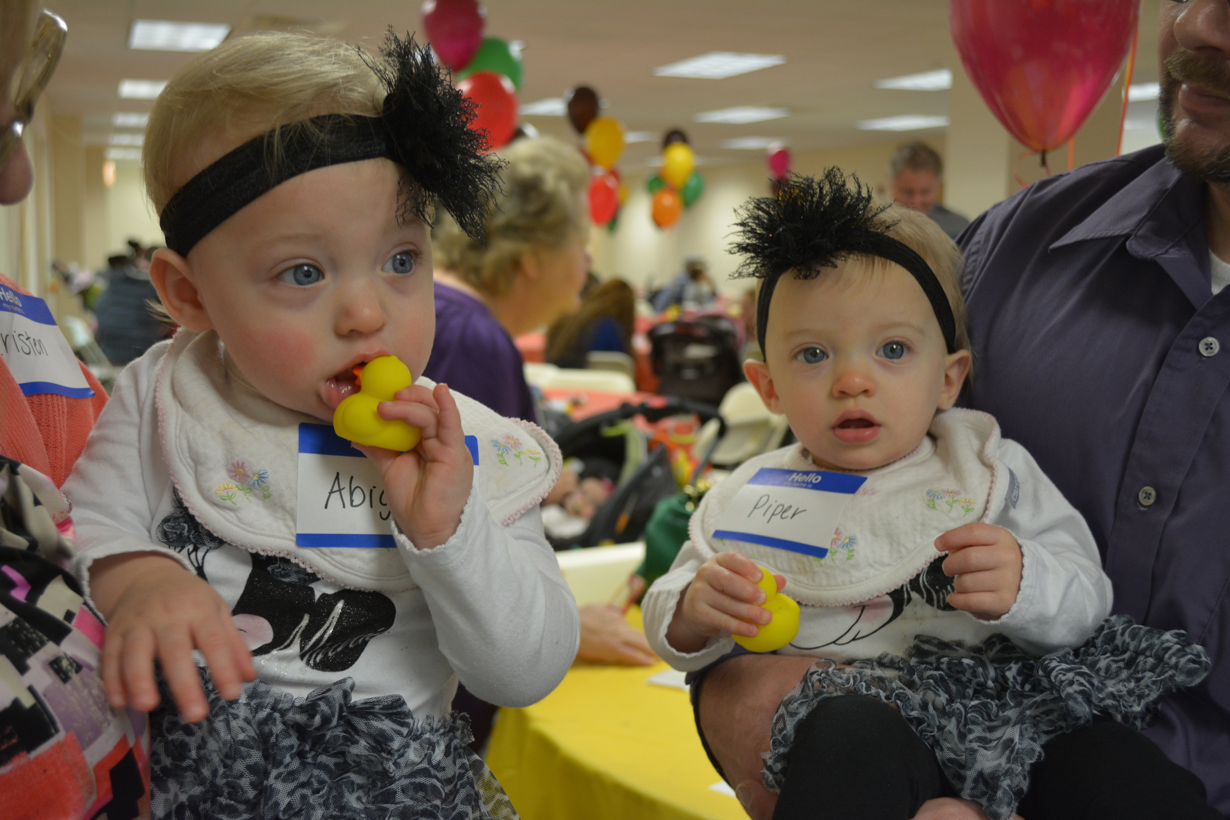 Twins Abigail and Piper Morgenegg will celebrate their first birthday on Nov. 21. ( Long Islander News photo / Arielle Dollinger)