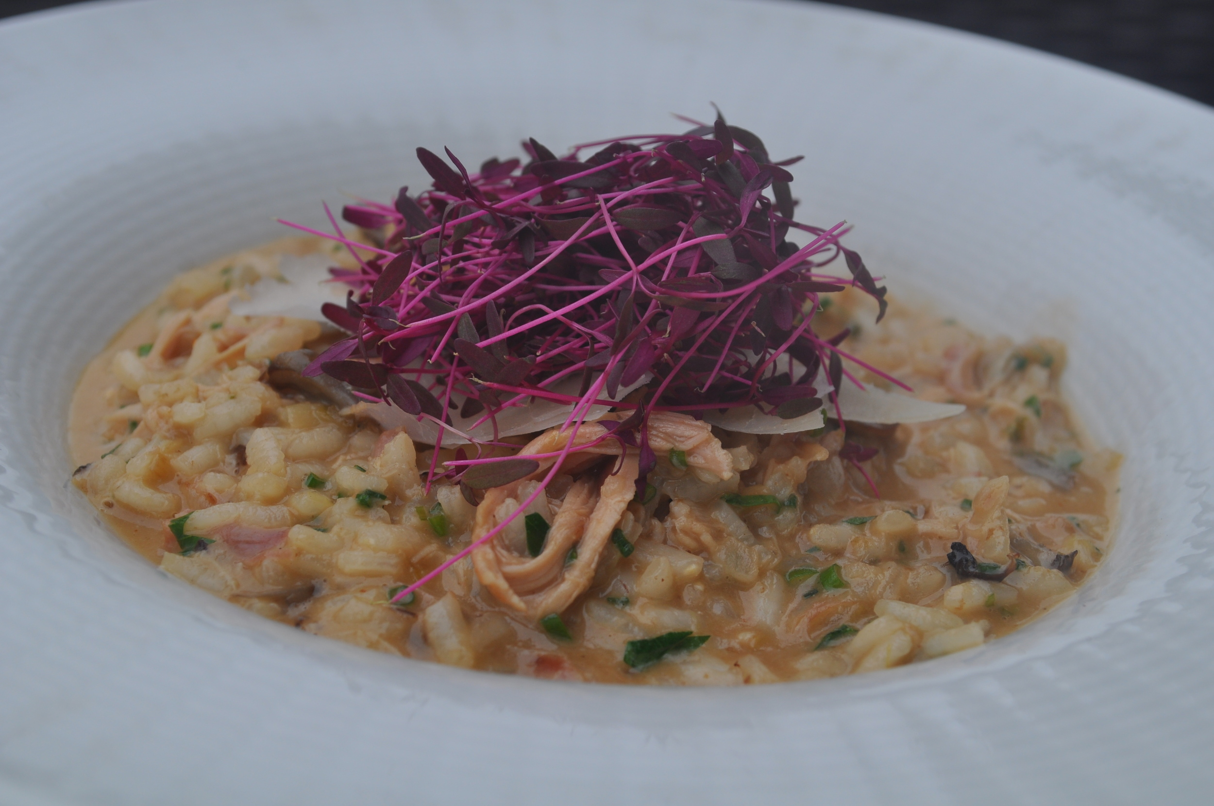 Wild chicken risotto is a highlight of the risotto of the day rotation.