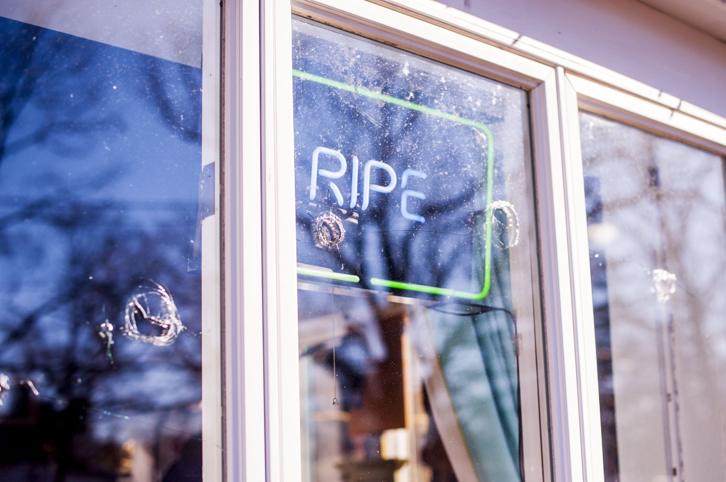 The owner of Ripe Art Gallery found 11 holes in the store's windows on the morning of Jan. 13 from what appeared to be BB gun shots.