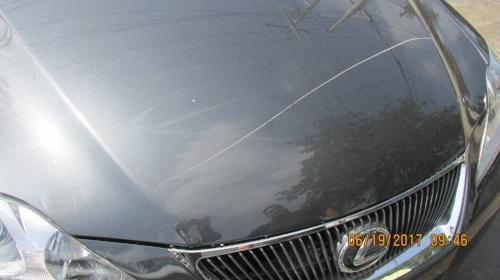 FireCrimePage_CarsScratched_2.JPG