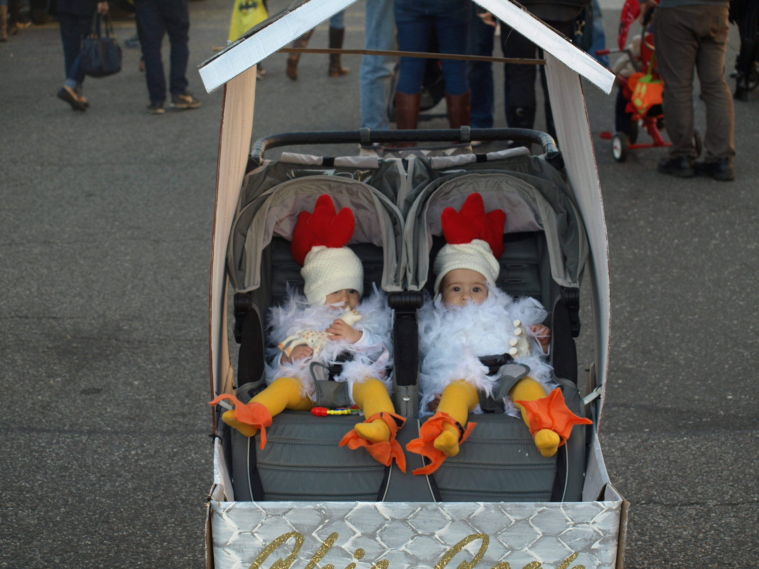 """Twin chicks braved the cold weather together in their """"chicken coup"""" stroller.  Long Islander News Photo/Connor Beach"""
