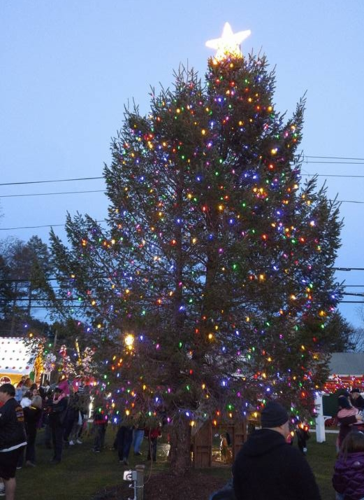 The tree at the 2016 Greenlawn Tree Lighting filled crowds with holiday cheer.   Photo by Rachael Risinger