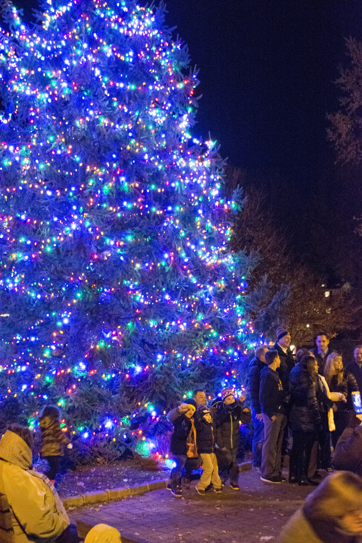 Once the tree was lit, lots of families made sure to snap a picture in front of it.  Long Islander News Photo/Andrew Wroblewski