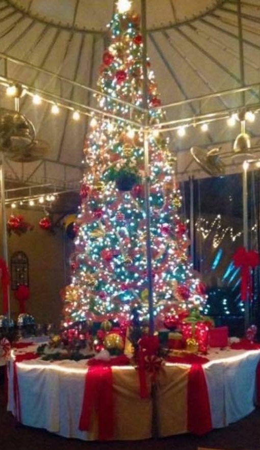 The tree is officially lit at Tutto Pazzo in Huntington.   Long Islander News Photo/Archives