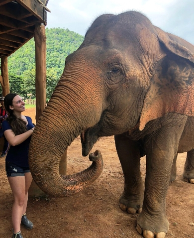 Kaitlyn Sage had the ultimate veterinary internship, traveling to Thailand to care for elephants rescued from abuse.