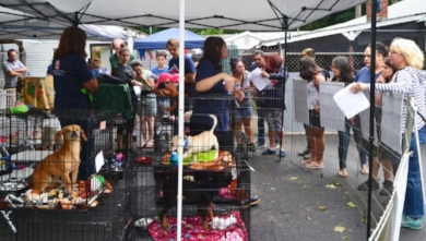 Pet-A-Palooza at Huntington's Little Shelter united families with new pets.    Photo/Little Shelter