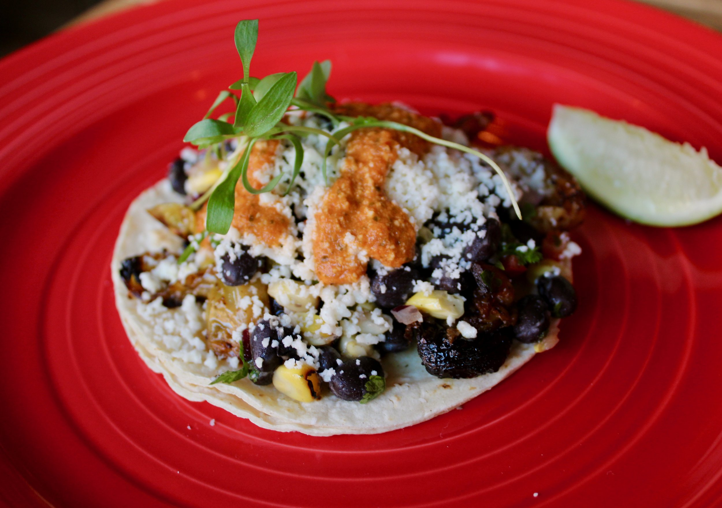 Sprouts taco with black bean corn salsa