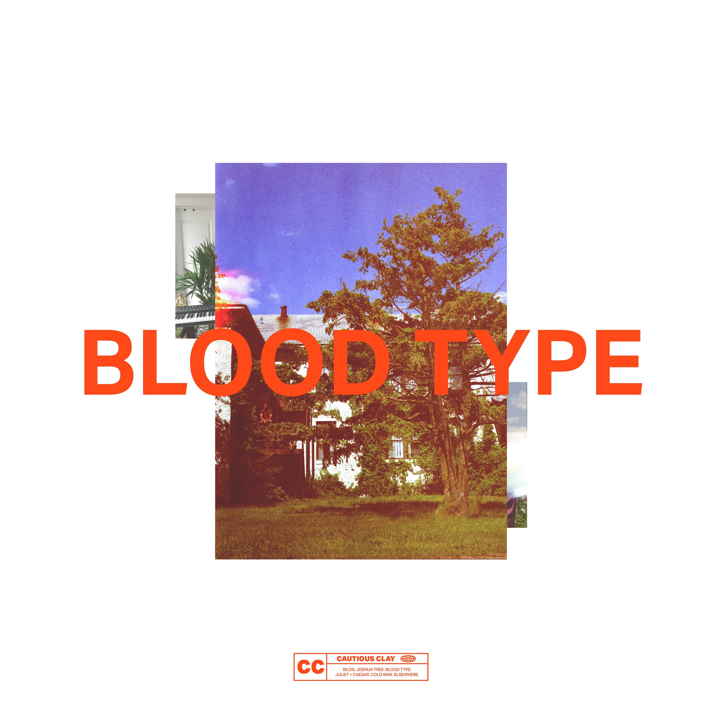 BLOOD TYPE FRONT COVER.jpg