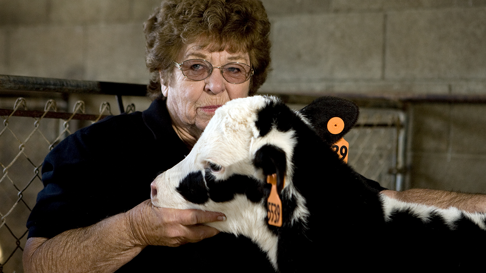 This is also one of the oldest photographs I have from my work in California. This is Mary, a tender-hearted dairy woman out of the Central Valley of California. She was constantly in the nursery of her newborn calves making sure they were healthy and happy. In this photo, she brought up a bucket and just sat down to be with the calves. The calves were just as eager to be near this tender-hearted woman. This is the face of the dairy farmer - wise, experienced, kind, and caring.