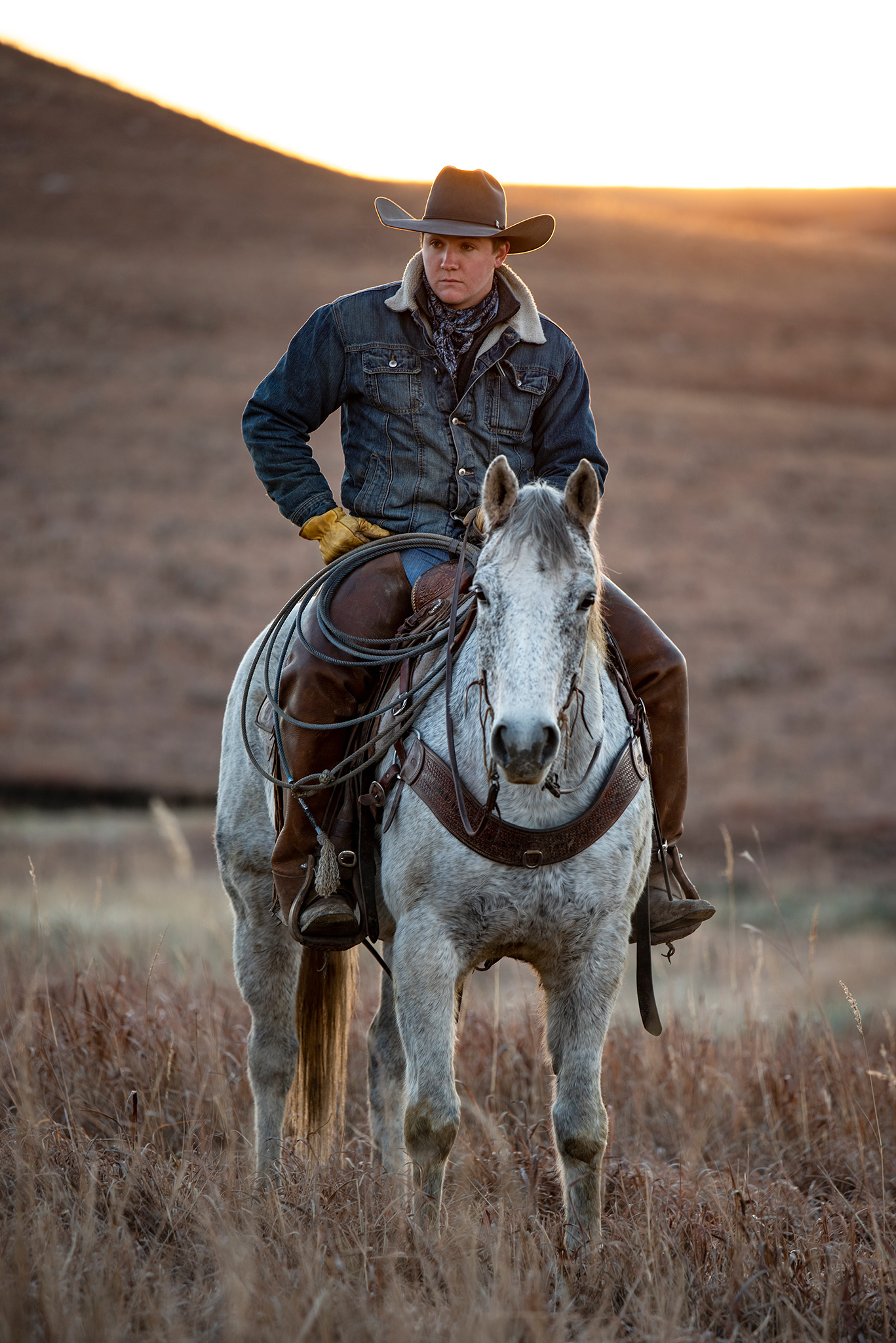 cowboy-on-horse-in-sunrise.jpg