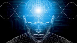 Some background forScientific Types:   The basic brainwaves of beta, alpha, theta and delta are measured scientifically by the frequencies of their respective waves. Beta has the highest, shortest frequency and Delta has the lowest and longest frequency. Basically, when you are operating within a specific brainwave, your brain is functioning at a certain frequency. Beta operates at 14-30 Hz. Alpha operates at 9-13 Hz. Theta operates at 4-8 Hz. Delta operates at 1-3 Hz.   Each of these brainwaves originate from a certain area of the brain. As each area of the brain controls certain functions of the body,brainwaves affect basic functioning states.