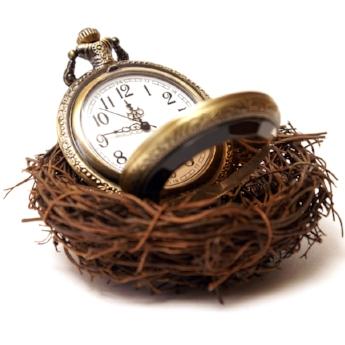Time Spa Nurture.jpeg