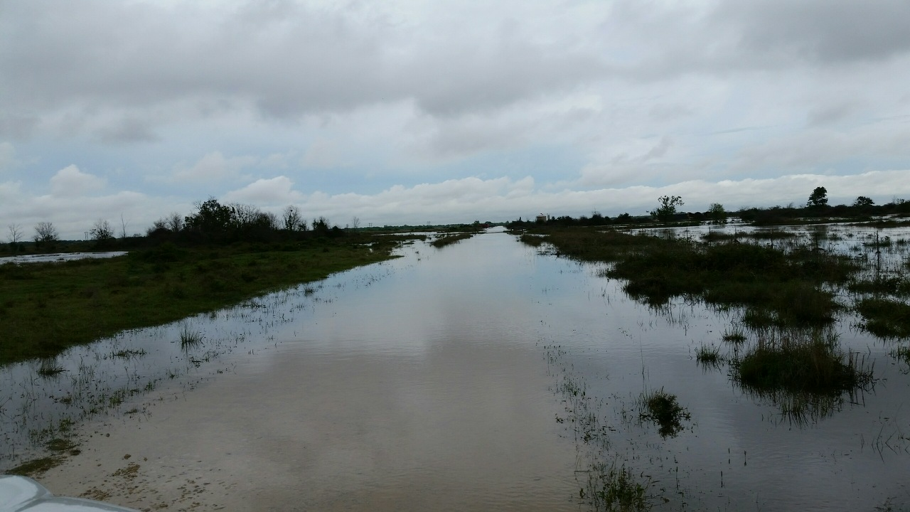 Slowing Down Floodwaters — KPC