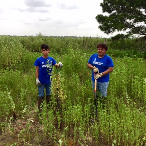 Community Involvement in Restoration -