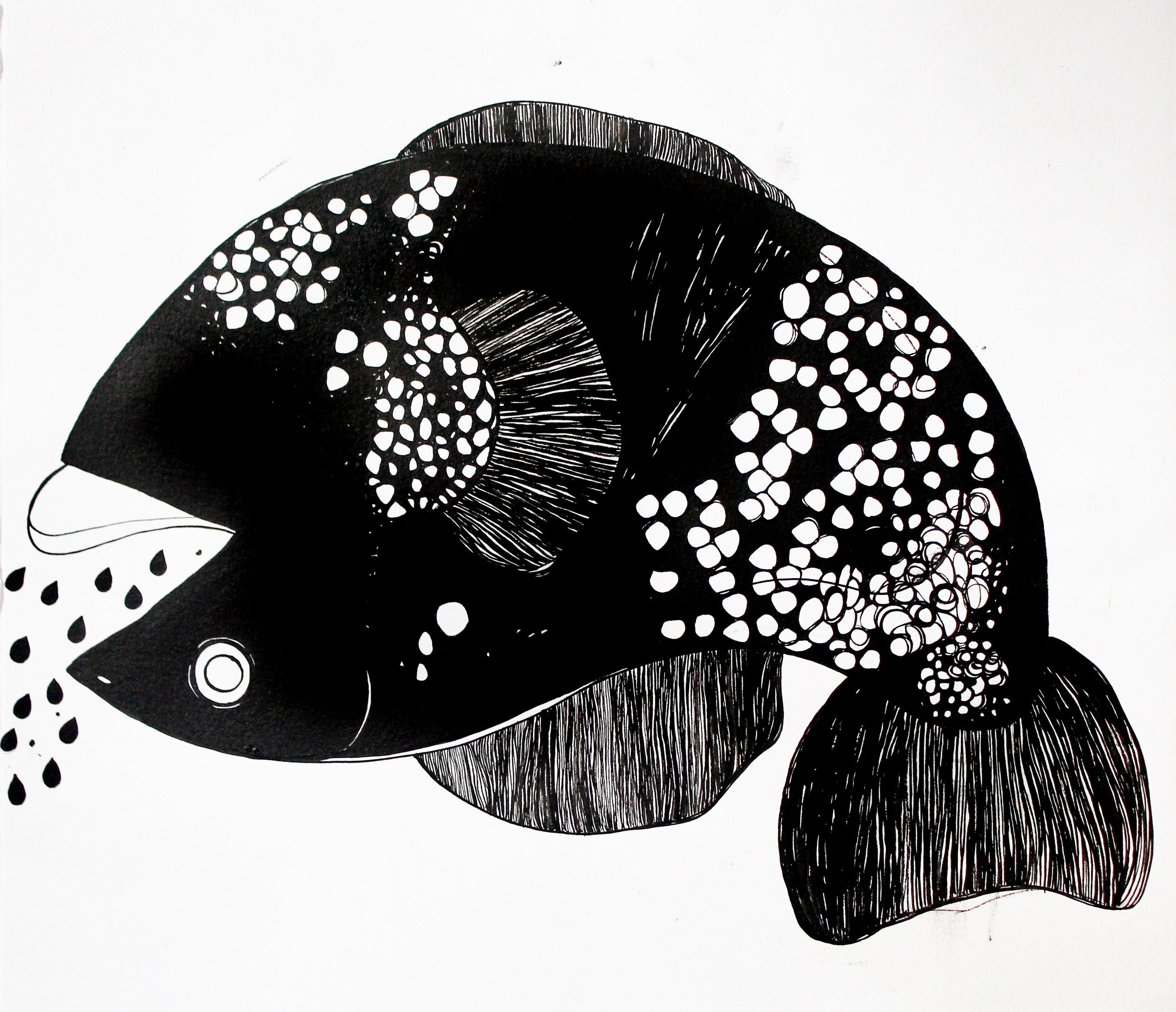 Paula Rivera, Fish, 2016 (1).JPG