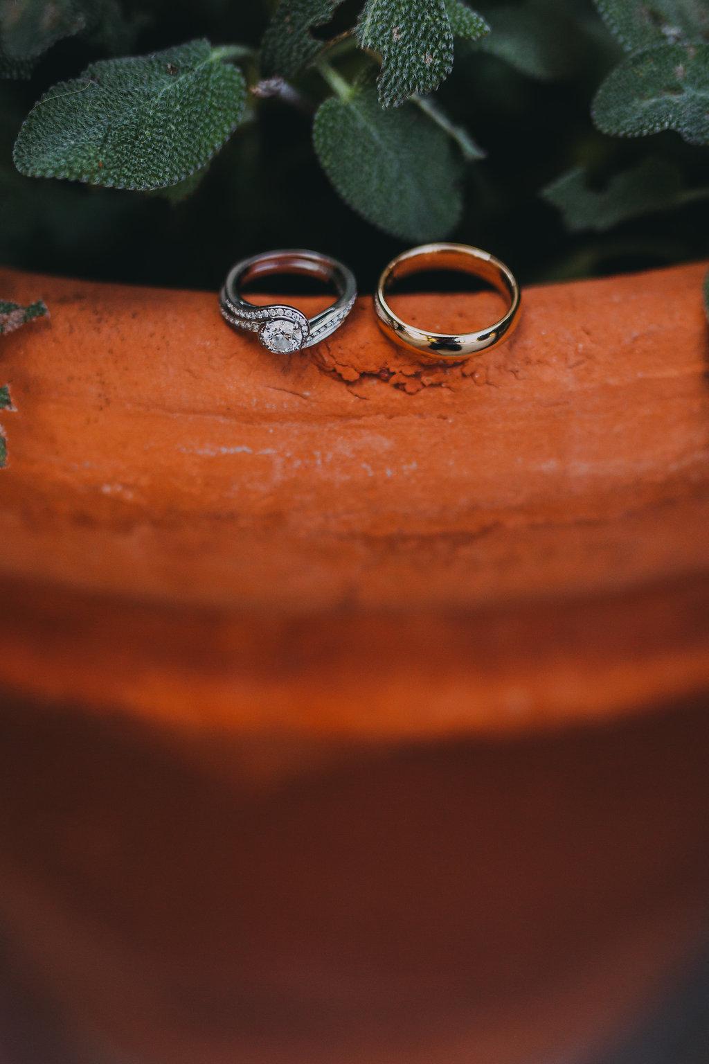 ellyn&paul_wedding-50.jpg