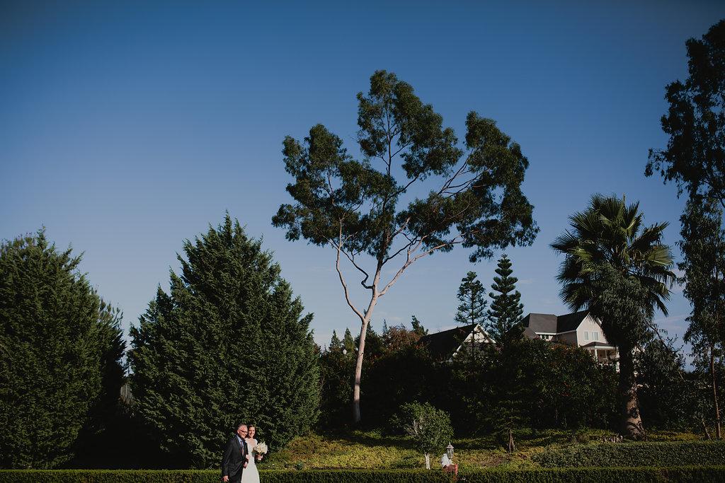 ellyn&paul_wedding-377.jpg