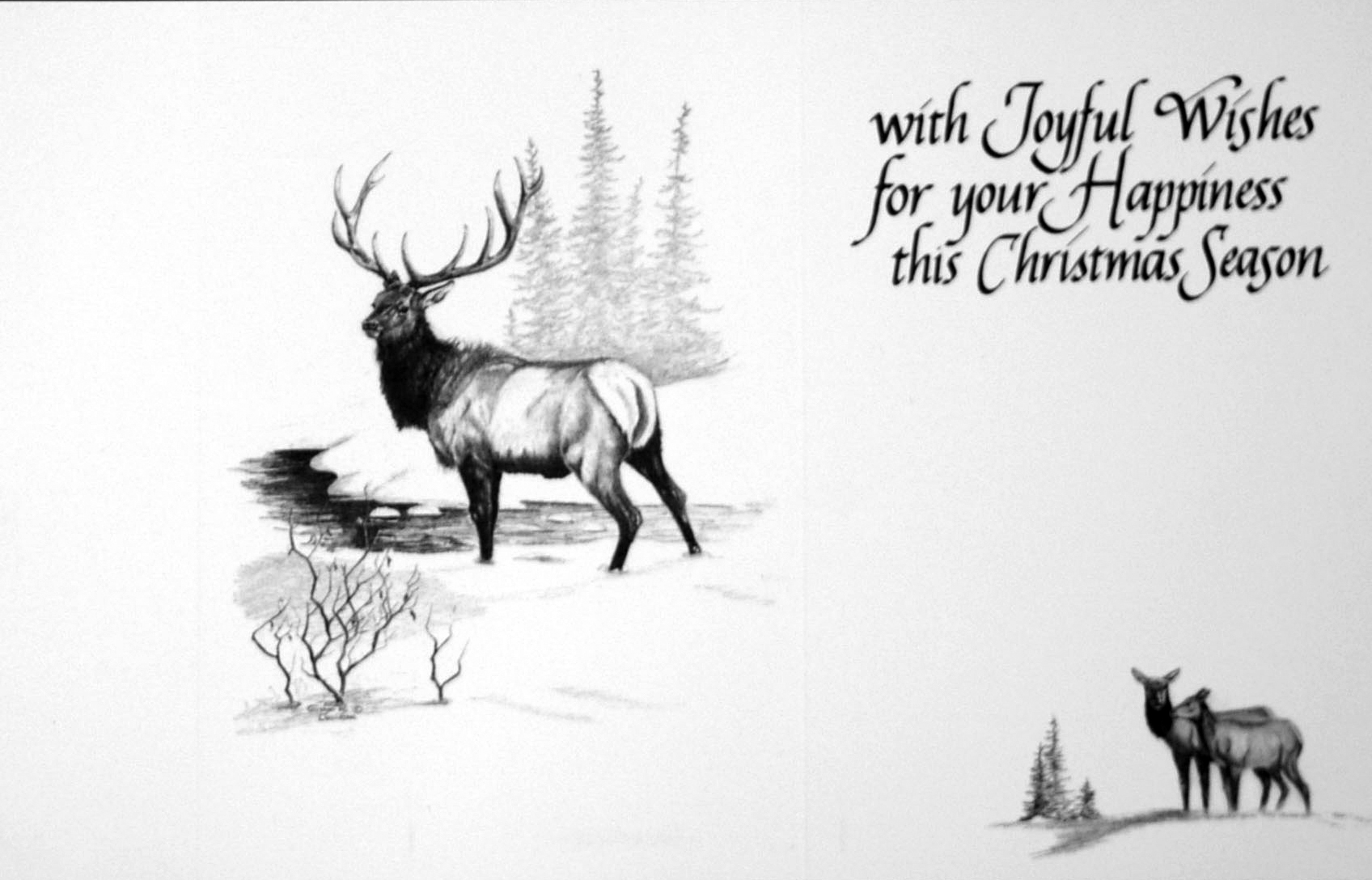 """""""with Joyful Wishes for your Happiness this Christmas Season""""     ( Bull Elk )"""