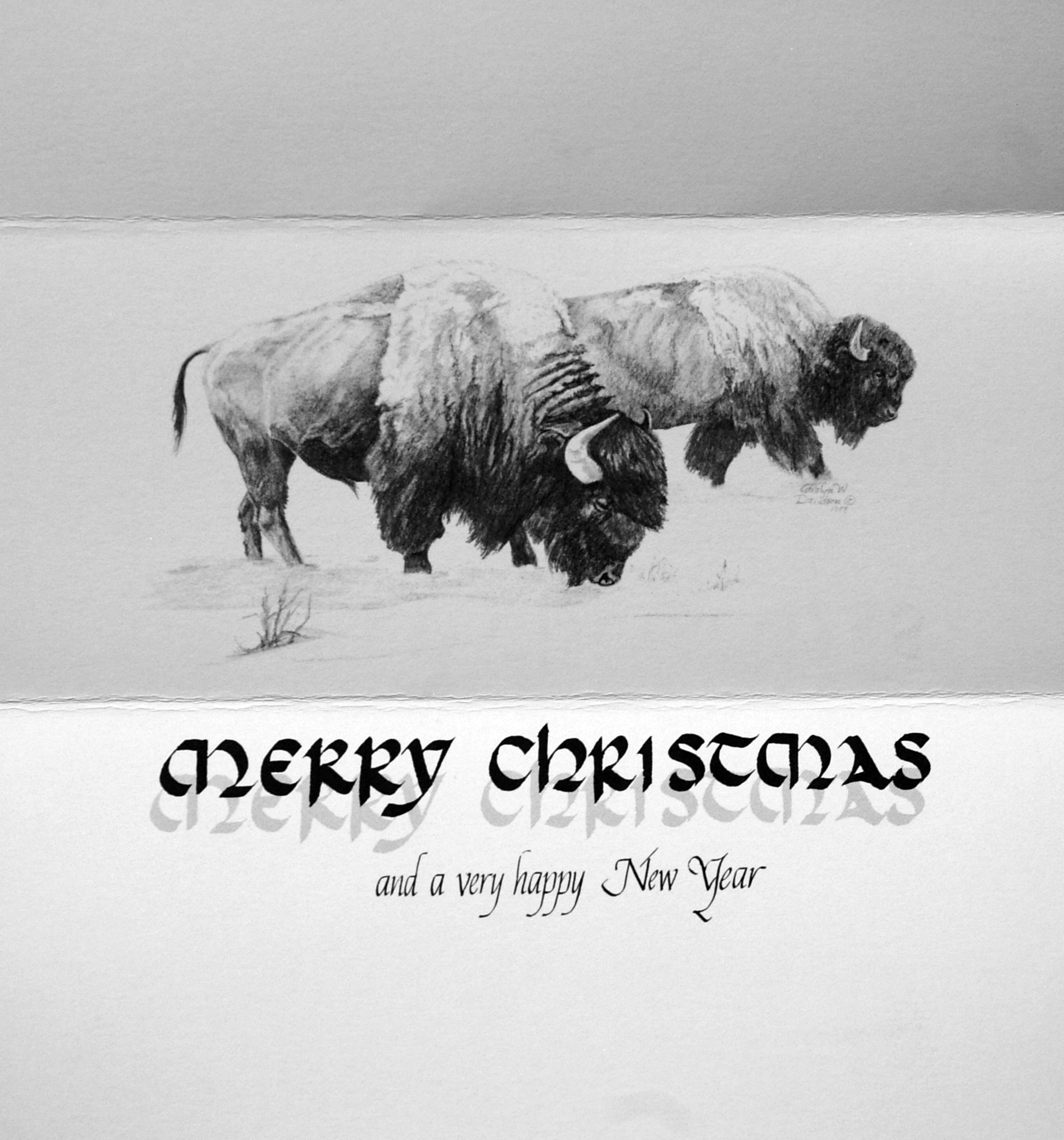 """""""Merry Christmas and a very happy New Year""""      (Buffalo)"""