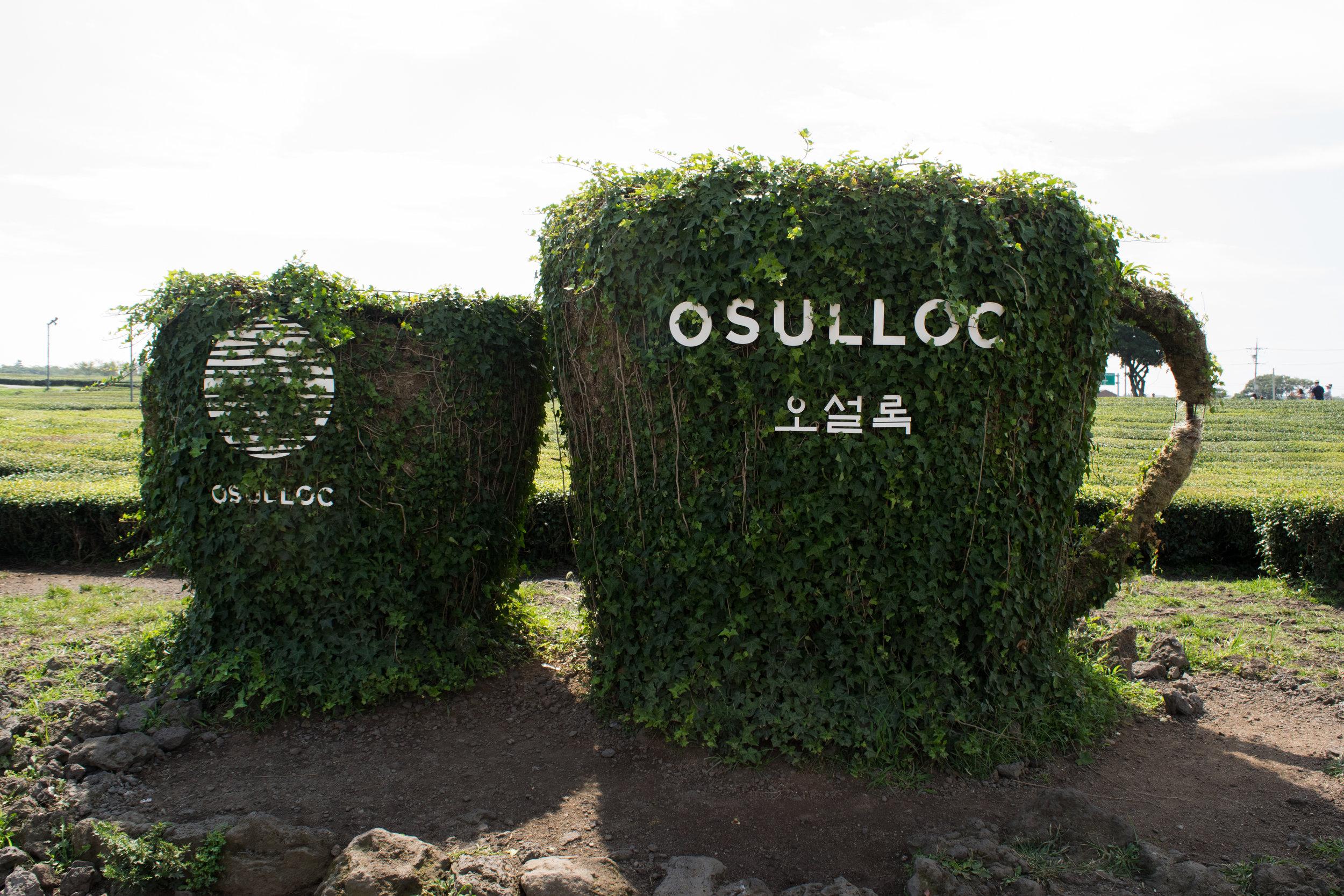 Osulloc Tea Museum