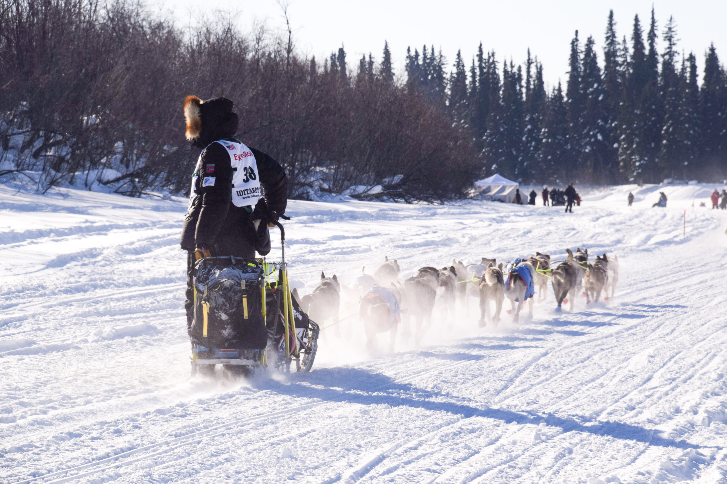 Joar Leifseth Ulson, a musher from Norway, with his team. Currently in 2nd place, but has yet to take any of the mandatory breaks.