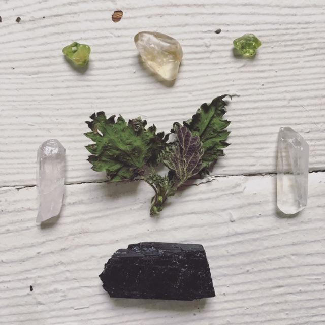 stone and nettle.JPG
