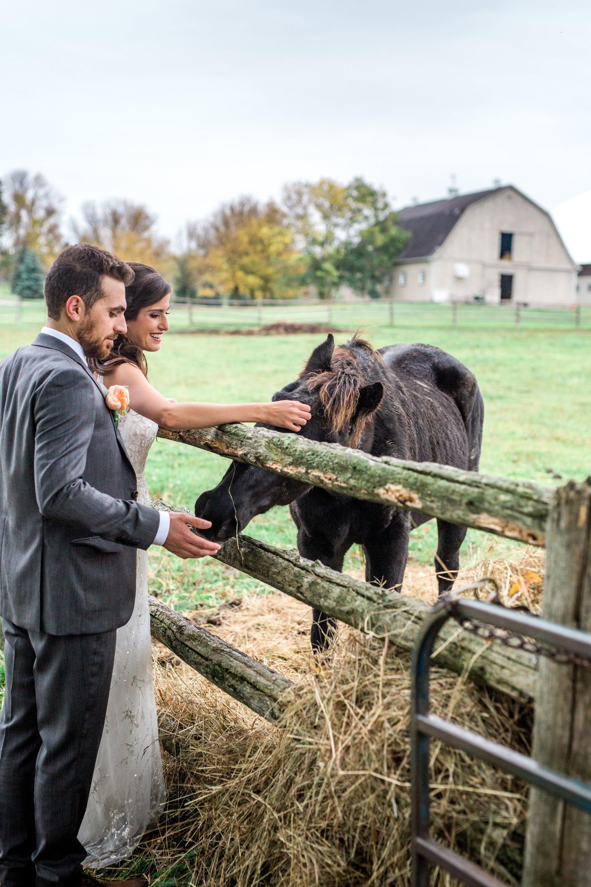 Amir-Golbazi-Danielle-Giroux-Photography_Toronto-Wedding_Cedarwood_Rachel-Paul_484.jpg