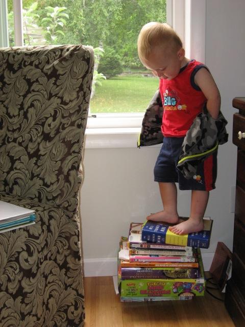 Pile o' Books