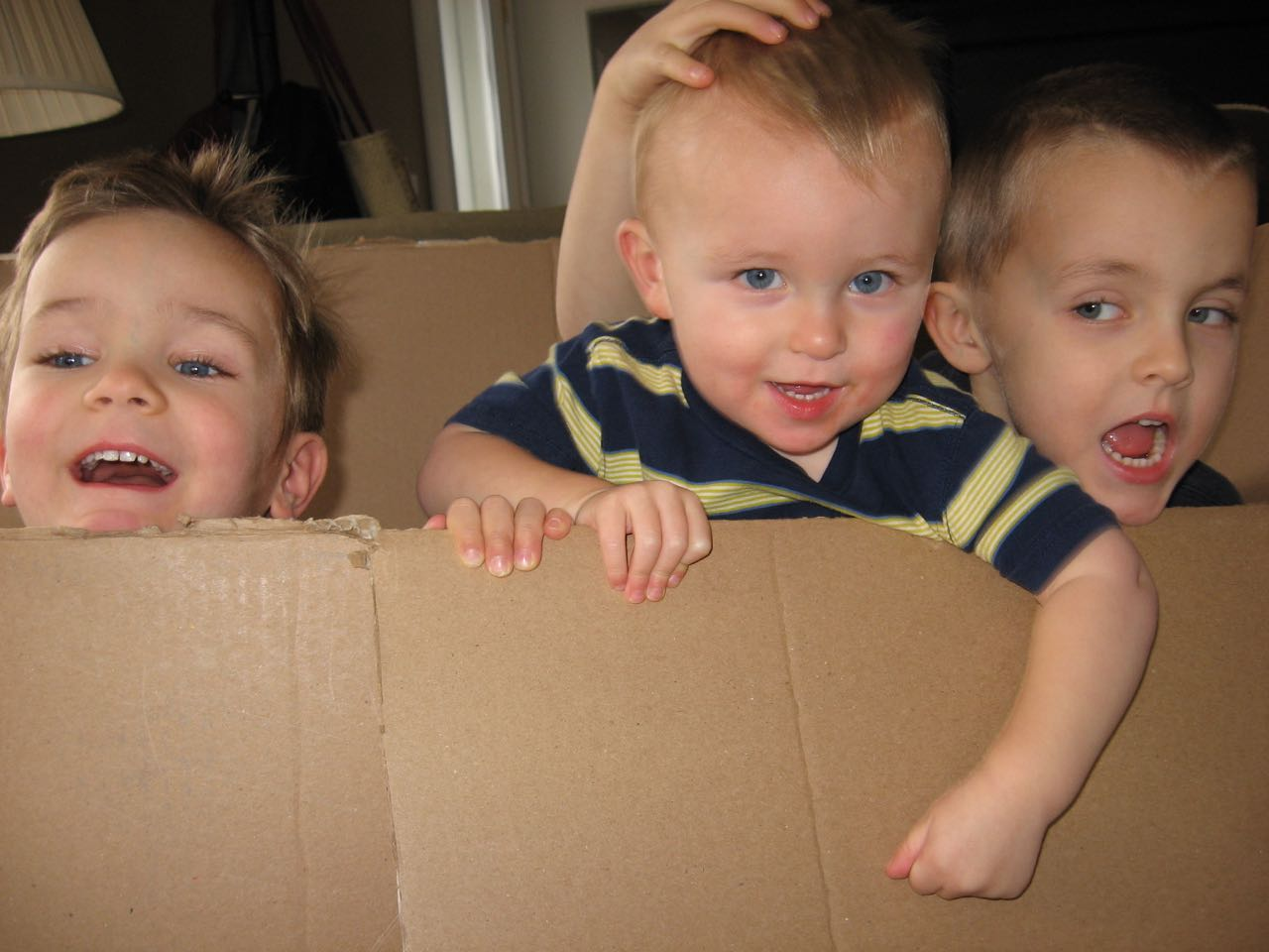 Box Boys IV