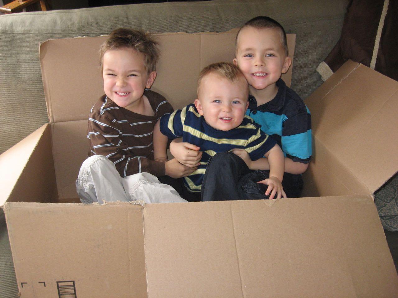 Box Boys II