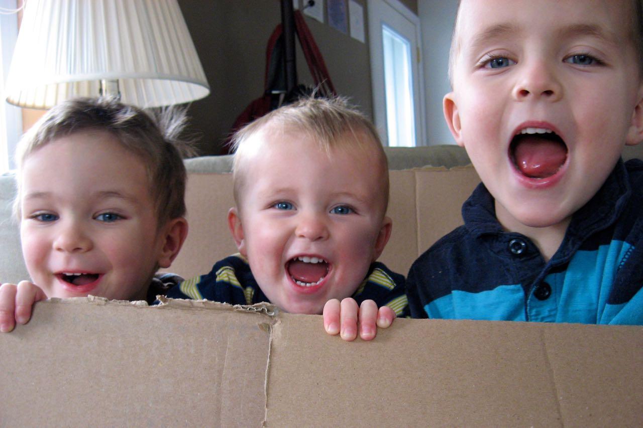 Box Boys V
