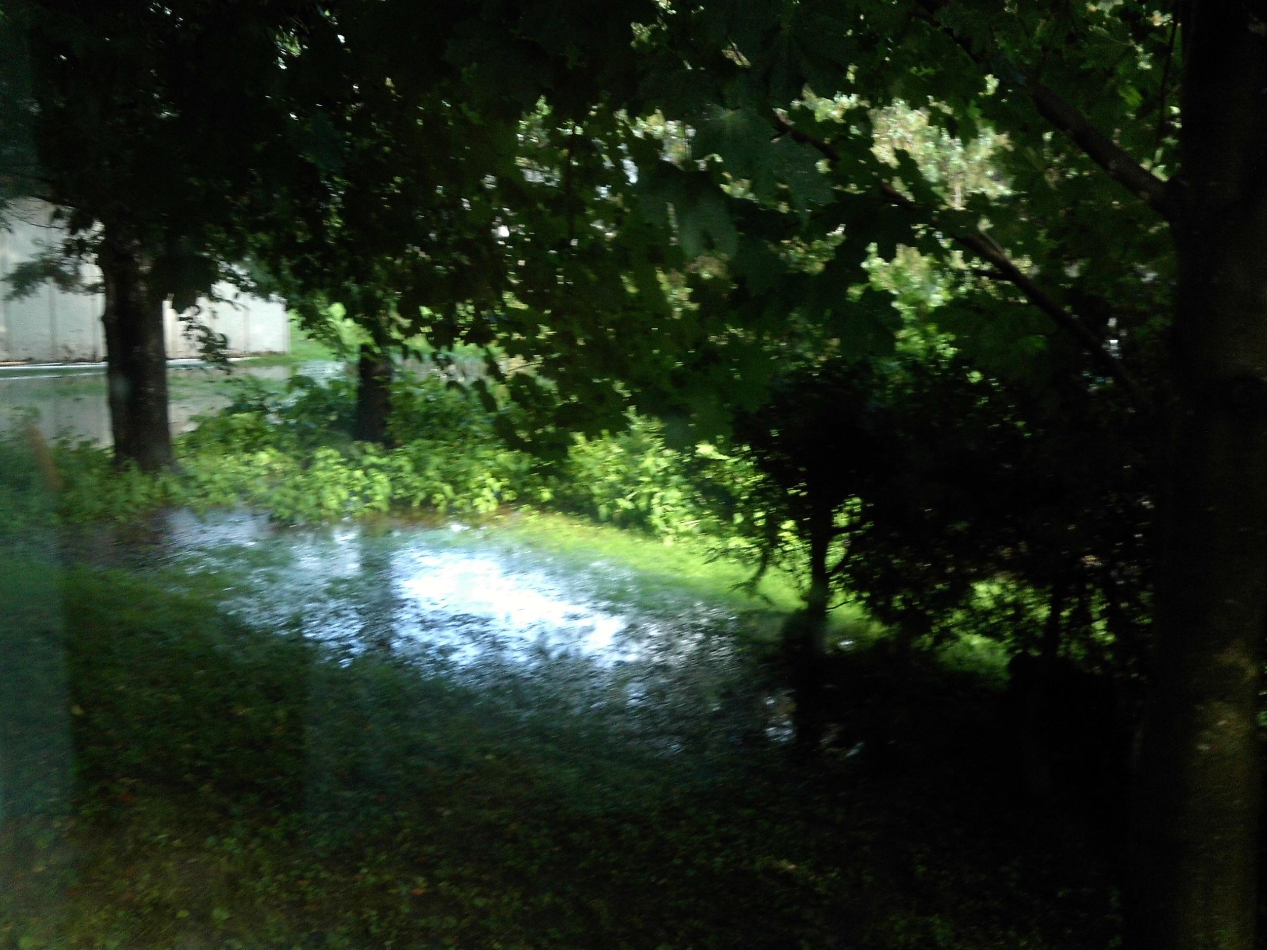 M: Backyard lake