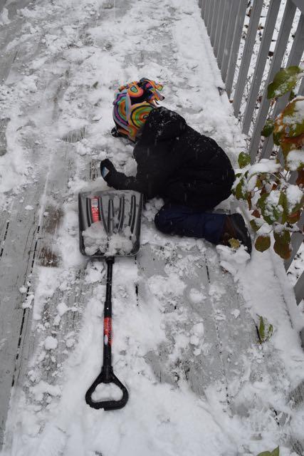 More Snowball Ammunition