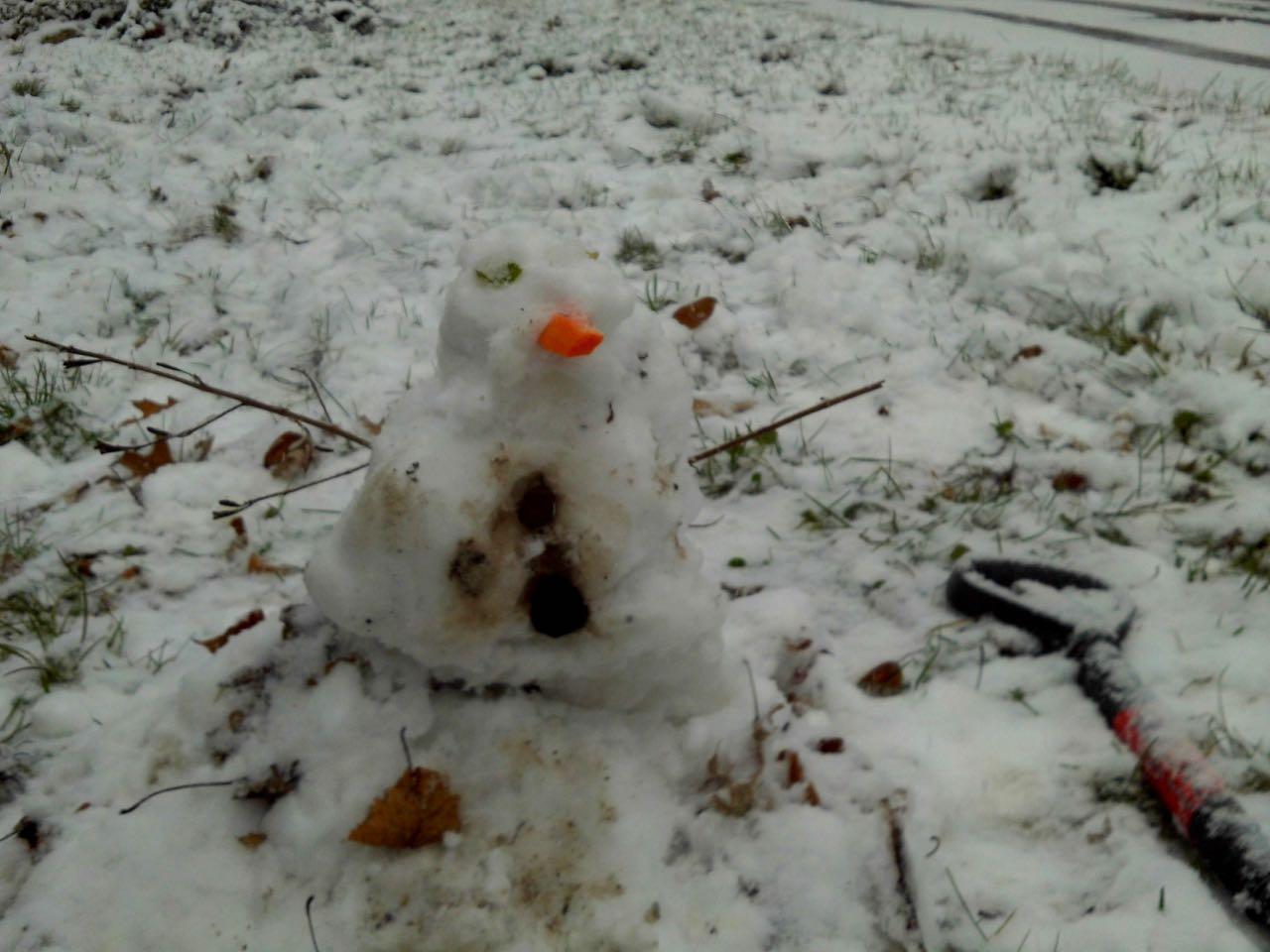 Micah's Snowman (MJD)