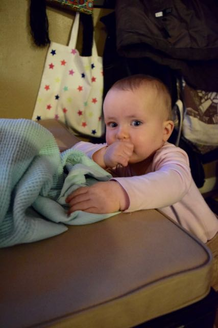 World's Most Critical Blanket