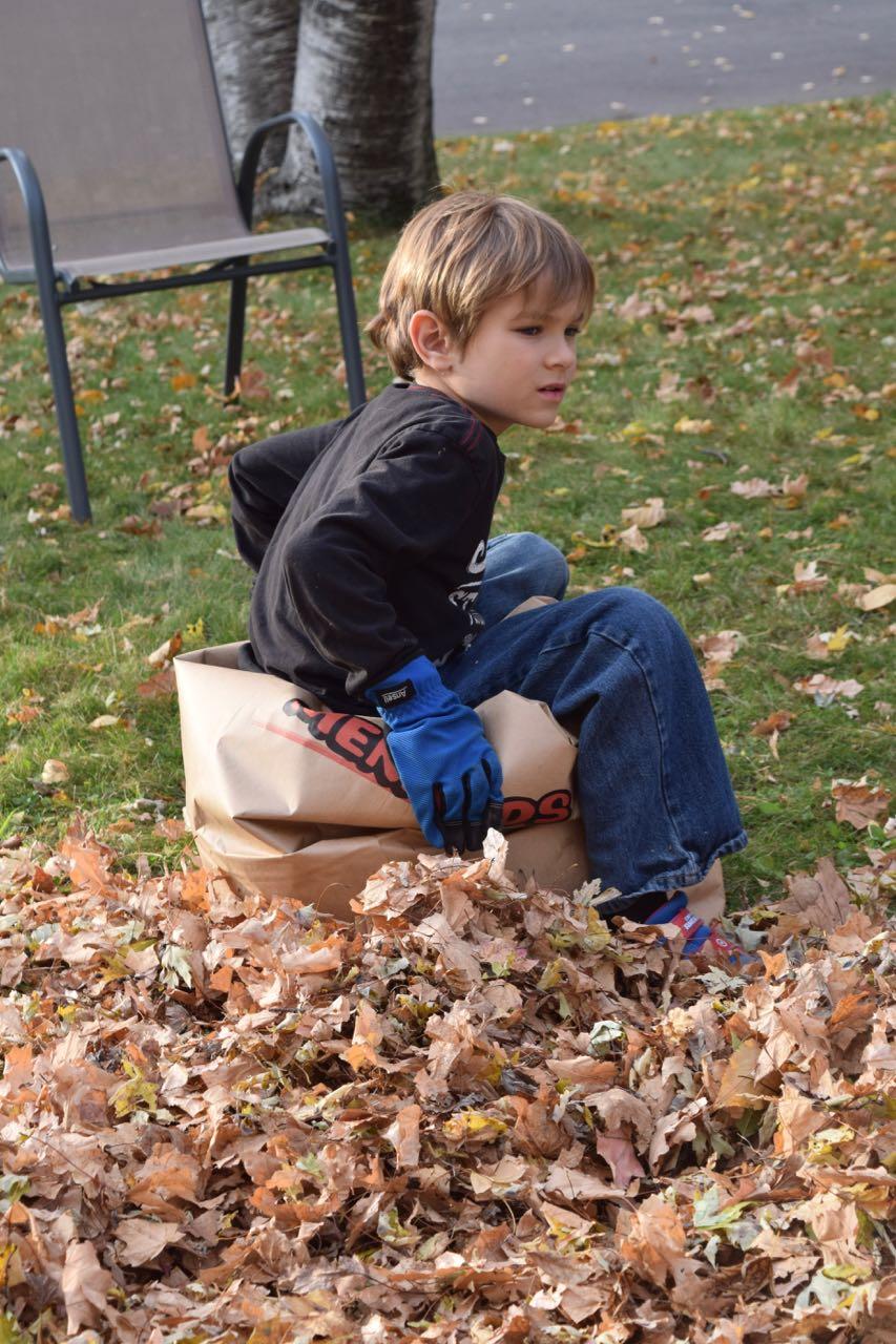 Leaf Work by Fisher