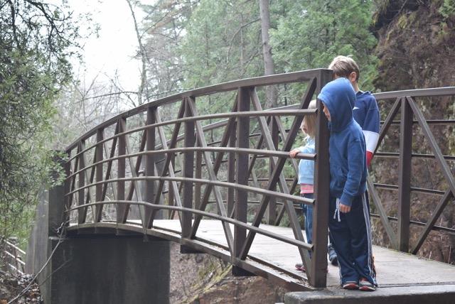 Bridges, too!