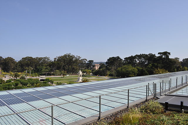 Concord from California Academy of Science