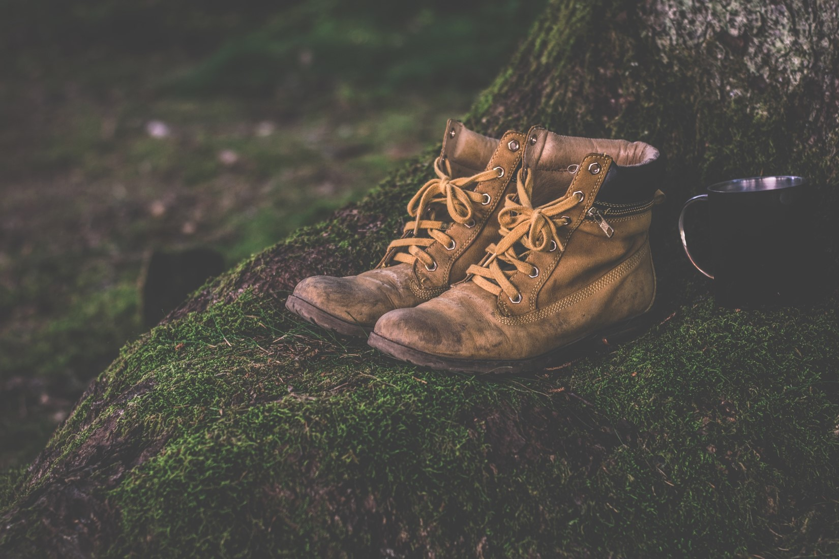 Work boots in forest compressed.jpg