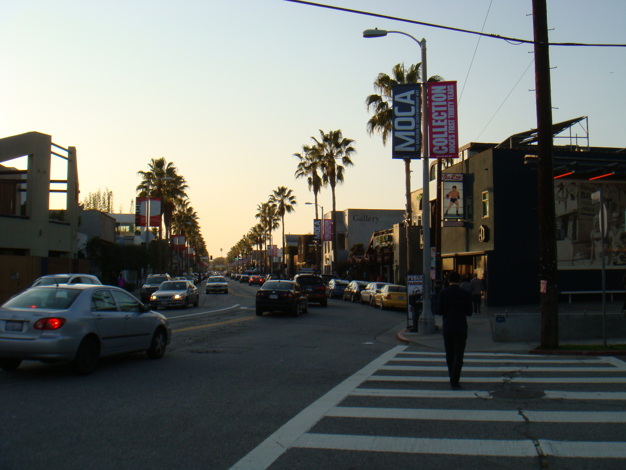 Abbot Kinney by Grant K Young