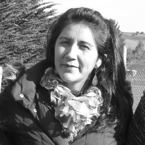 Silvia Calfuqueo Lefio  Silvia Calfuqueo Lefio has been a teacher for 10 years before she decided in 2014 to stay home with her family and dedicate herself to work on projects in her community. Since then, she joined the management team of the Grupo de Apoyo Mutuo, and together with Nadia, and the Mapuche filmmaker Juan Raín, has collaborated with MAPLE Microdevelopment in documenting the creation of the Grupo de Apoyo Mutuo. Her involvement has been ensuring the group has a self-sustainable business to support the management team and family agriculture. She has also collaborated with the Llaguepulli Community's School  Kom Pu Lof Ni Kimeltuwe  and the Mapuche School of Filmmaking, a summer camp for Mapuche youth in the region organized by Mr. Raín in collaboration with Canadian partners. Over this time, she was able to start her Artisan business jointly with other Mapuche women from the region. She is also a talented weaver and mother of three.
