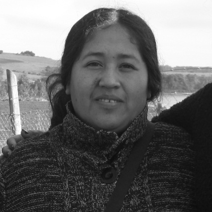 Viviana Calfuqueo Caniunir  Viviana Calfuqueo Caniuñir has been part of the management team of the Grupo de Apoyo Mutuo since its formation in 2014, and is currently collaborating with MAPLE in the participatory design and implementation of a livelihoods program in Allipén, a community neighboring Llaguepulli, leading a newly formed Artisan women group, Kazau Zomo, for the revitalization of Mapuche traditional art expressed through textiles and basketry. Through several capacity building and entrepreneurship programs, including those with MAPLE, she has developed excellent leadership qualities. She has also been a Cultural Leader, Parents Association President, and Community Liaison for a road improvement project (2016). She is also a mother of four, a women leader, entrepreneur and skilled weaver of the traditional Mapuche vertical loom weaving, or  witral .
