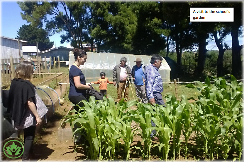 Jacqui Caine Visits a  School Garden.jpg