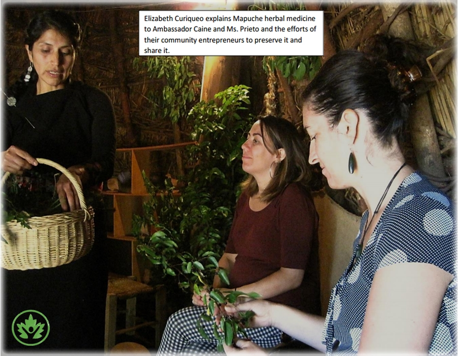 Elizabeth Curiquoe explaing herbal medicine.jpg