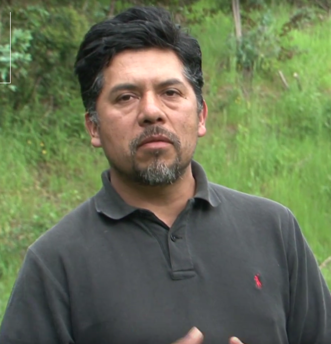 """Fernando Quilaqueo  Fernando Quilaqueo Calfuqueo, born and raised in the Mapuche Lof of Llaguepulli, is an Agricultural Technician with experience collaborating in various productive and cultural projects with Mapuche-Pehuenche Communities in the Lonquimay Mountains and with Lafkenche Communities in Saavedra and Teodoro Schmidt. In search of better job prospects he migrated to the capital Santiago. After more than five years far away from the Community, MAPLE offered him the opportunity to join our team as Field Coordinator for the Program for Strengthening Family Foods and Livelihoods with and work in agroecology and agroforestry, his areas of interest, with the families of his own community, in a project he describes as an """"innovative proposal for the development of my own Community"""". Fernando and his wife also collaborate with a family tourism business focusing in bird-watching and Mapuche traditional herbal medicine."""